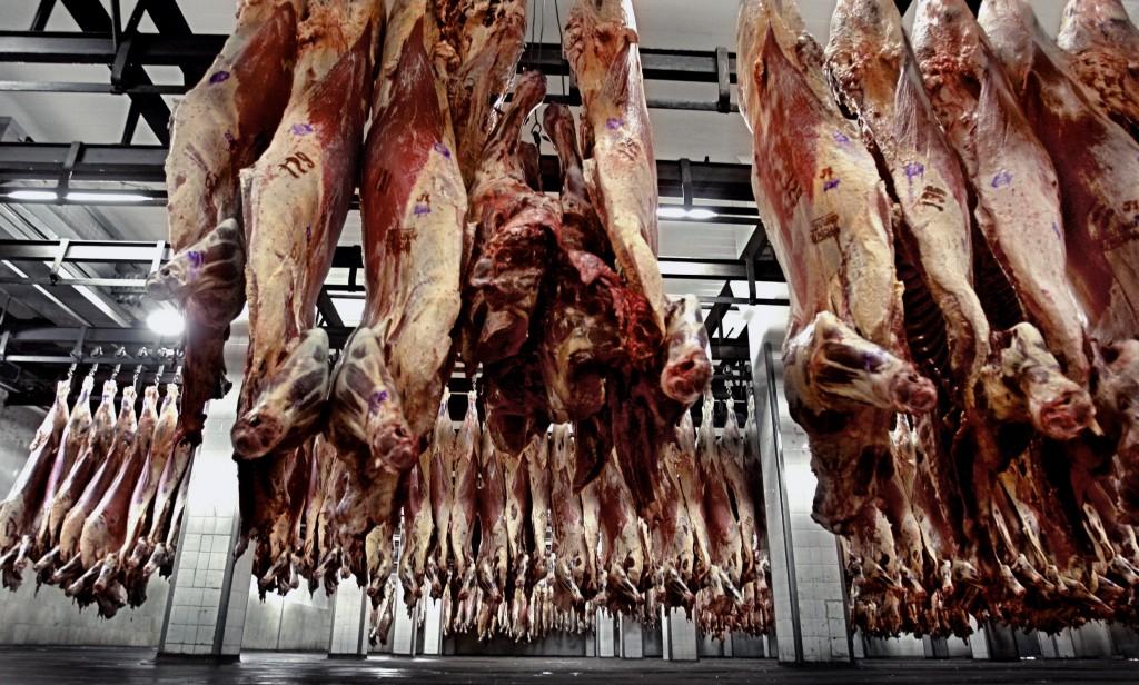 carne py de exportación